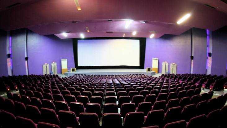 В четырех районах Брянской области обновят кинозалы домов культуры