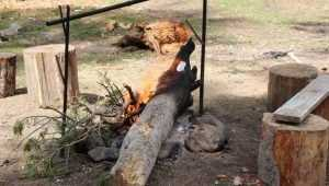 МЧС призвало брянцев не разводить огонь в сухой траве