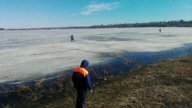 Брянские спасатели сообщили о безбашенных рыбаках на тонком льду