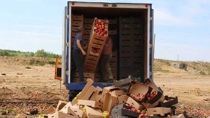 На брянском полигоне раздавили трактором опасные клубнику, яблоки и томаты