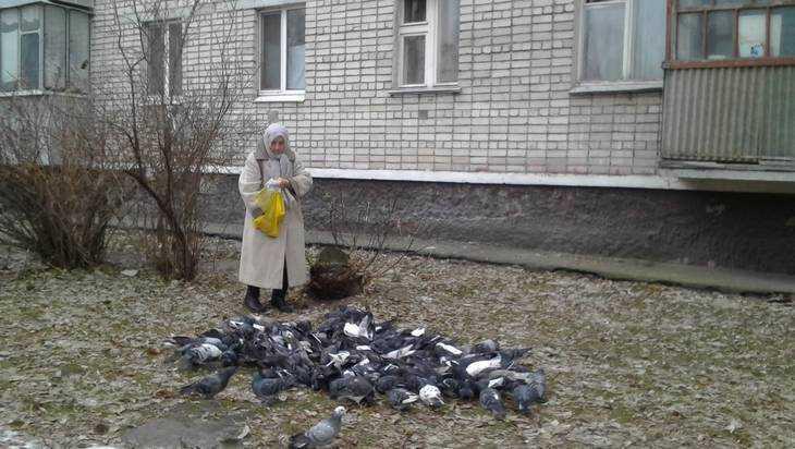 В Брянской области стартовала эстафета чистоты