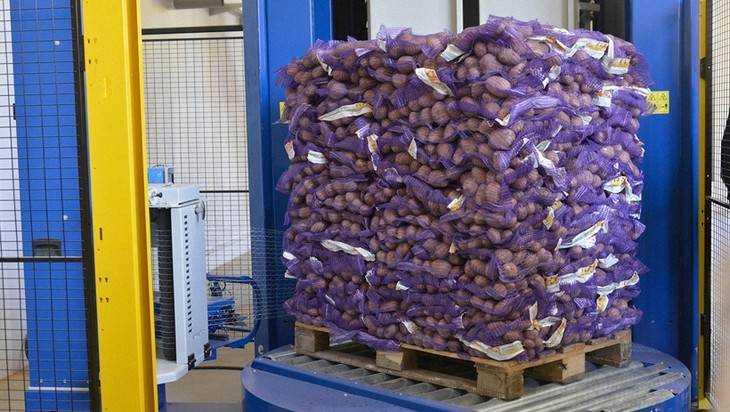 Европа прислала в Брянскую область 685 тонн картофеля с паршой
