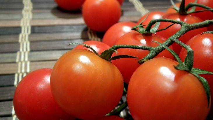 На брянском полигоне 260 кг турецких помидоров пустили под трактор