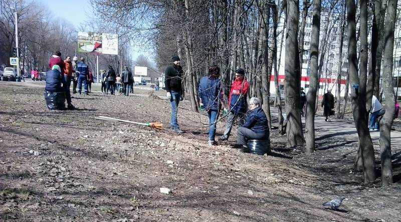 Тысячи жителей Брянской области вышли на субботник