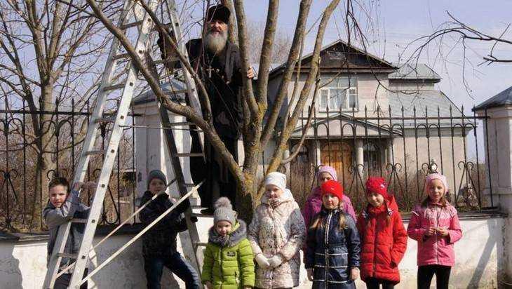 В Севске настоятель храма и дети установили кормушки и скворечники