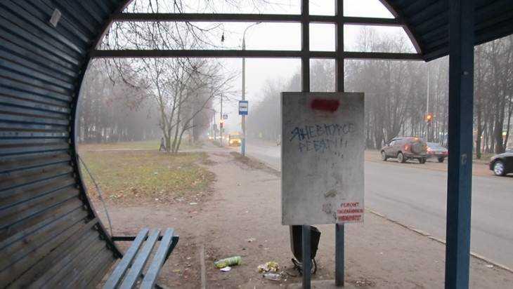 В Брянске предложили начать революцию благоустройства