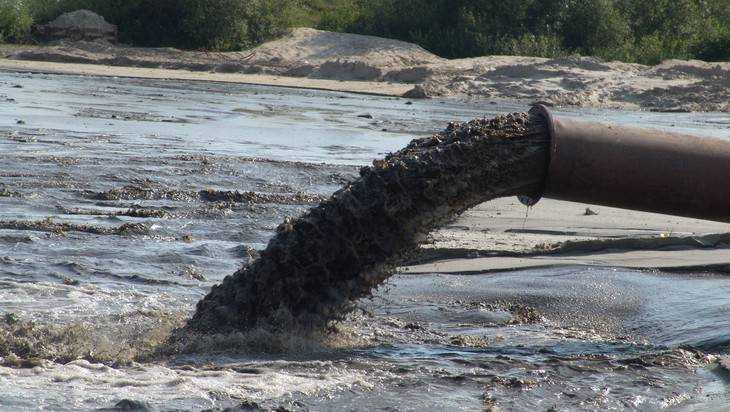 Завод «Сыр Стародубский» обвинили в загрязнении рек Бабинец и Вабля