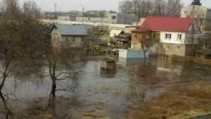 В Брянске Десна приблизилась к домам на Речной