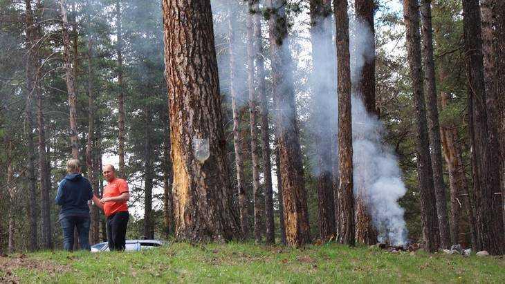 В брянских лесах бороться с пожарами будут с помощью огня