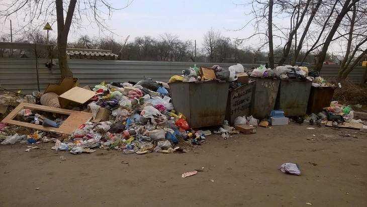 Брянцы пожаловались на горы мусора на улице Спартаковской