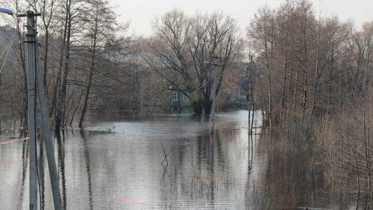 В Брянске подтопило 11 приусадебных участков