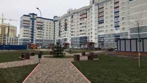 В Брянске «город будущего» оказался унылой трущобой с милыми элементами