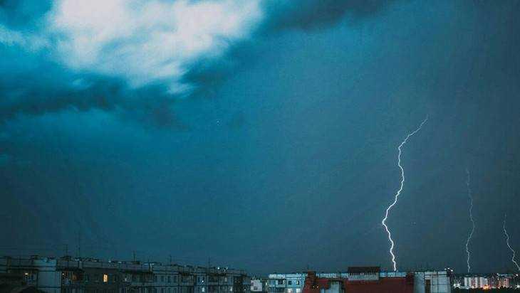 МЧС предупредило о грозах и сильном ветре в Брянской области