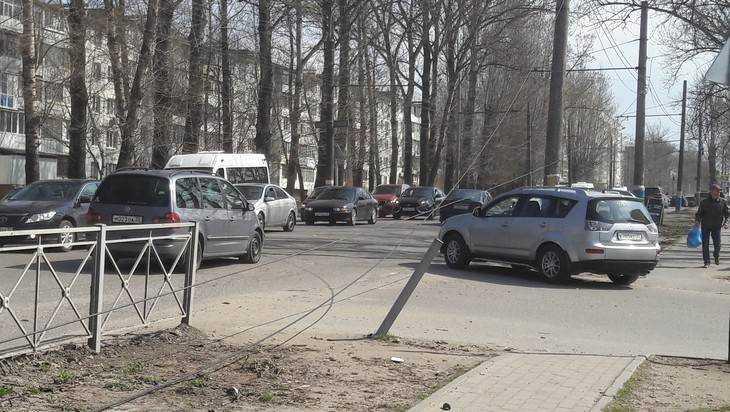 В Брянске из-за ураганного ветра дерево рухнуло на провода