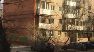 В Володарском районе Брянска упавшее дерево раздавило иномарку