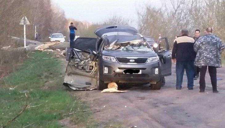 В Стародубском районе дерево рухнуло на автомобиль с женщиной