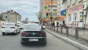 В Брянске заметили темного московского хитреца