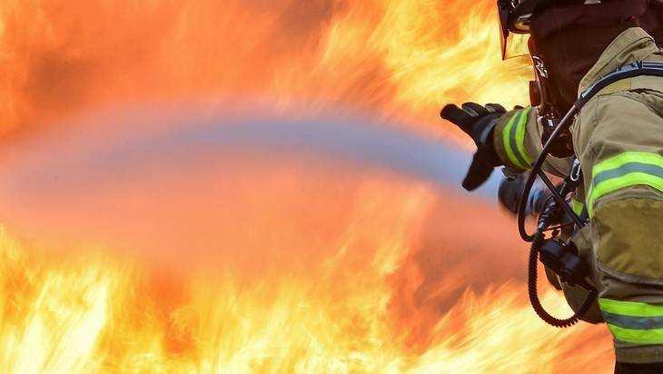 Двое детей погибли при пожаре в Брянской области
