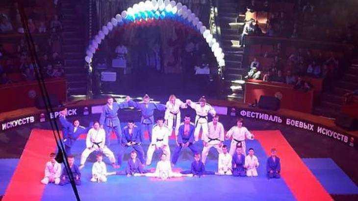 В Брянске единороссы поддержали XI областной фестиваль боевых искусств