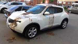 В Брянске хулиганы вылили фекалии на автомобиль Nissan
