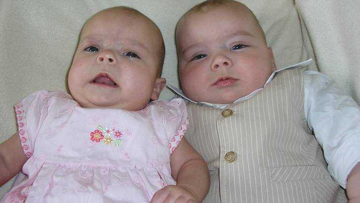В Брянской области с начала года родились 3607 детей, включая 34 двойни