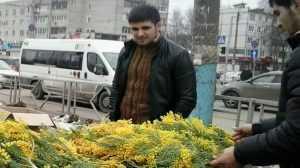 Брянские чиновники решили подстричь за 8 миллионов цветы