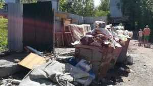 В центре Брянска три месяца не убирают мусор