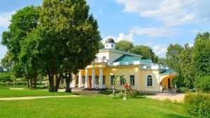 Брянцы выразили недовольство графиком работы музея Тютчева в Овстуге