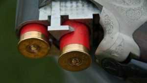 В Севском районе горе-охотник расстрелял чужой автомобиль Peugeot