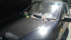 В Брянске мстители за парковку засыпали автомобиль мусором