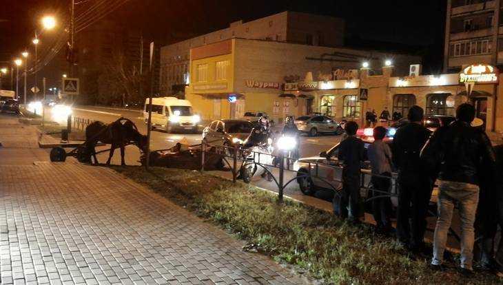В ДТП с гужевой повозкой в Брянске пострадал 2-летний ребенок