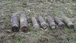 В Брянской области за сутки обезвредили 40 снарядов и 19 гранат