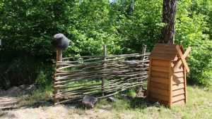 В Брянской области стартовал конкурс «Лучший кордон лесника»