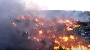 Брянская полиция начала расследовать крупный пожар на жуковском полигоне