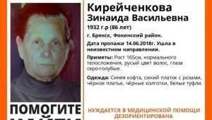 В Брянске пропала без вести 86-летняя Зинаида Кирейченкова