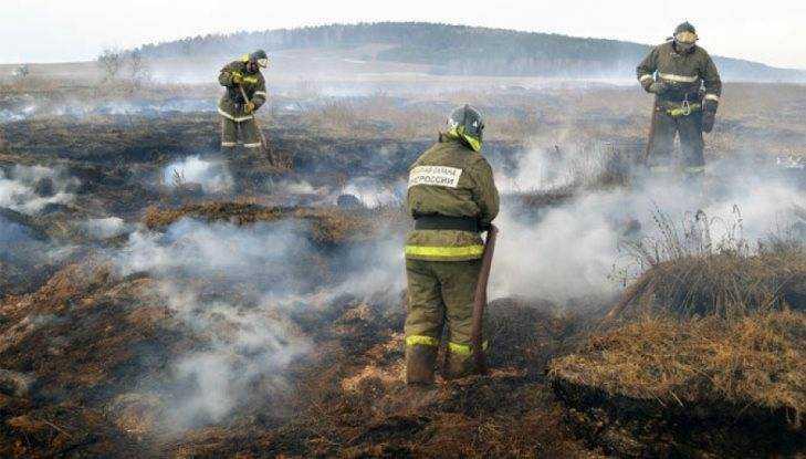 В Погарском районе с торфяным пожаром сражаются 20 спасателей
