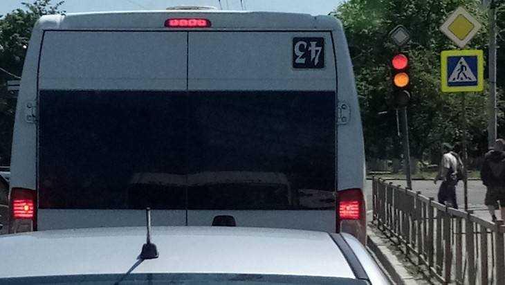 В Брянске открыли новый маршрут – «43-й зеркальный»