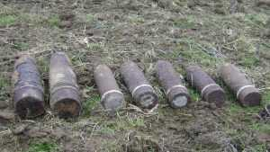 Жителей посёлка Сеща напугали две мины и граната