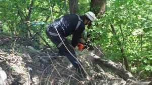 Глава Брянска Хлиманков рассказал о будущих чудо-парках в Судках