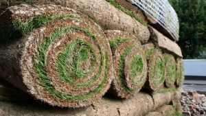 Покупка рулонного газона на метраж с доставкой