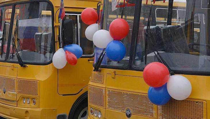 Для школ Брянской области купят 12 новых автобусов