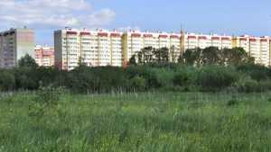 5 причин приобрести квартиру в близости с природой