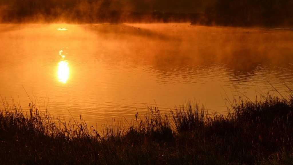В Навлинском районе утонул 29-летний мужчина