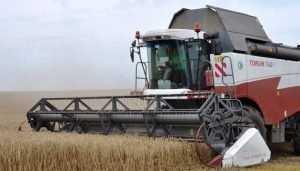 На Брянщине ветераны сельского хозяйства дали старт уборочной кампании