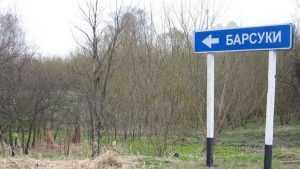 Уровень радиации в брянском посёлке Барсуки признали рекордным в России