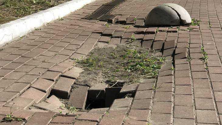 В Брянске образовались провалы на улице Дуки и в парке «Соловьи»