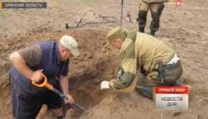 В Дубровском районе Брянской области обнаружили останки 49 бойцов
