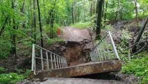 В Брянске после ливня в роще «Соловьи» обвалился мост