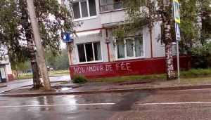 Властям Брянска указали на исчезнувшую с улицы Орловской «зебру»