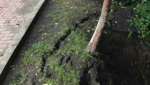 В Брянске забили тревогу из-за разрушения  дамбы через Нижний Судок